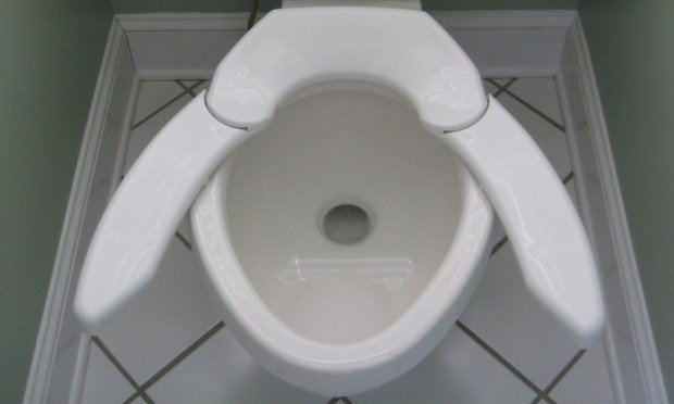 Adjustable Toilet Seat One Size Fits All Butts Technabob