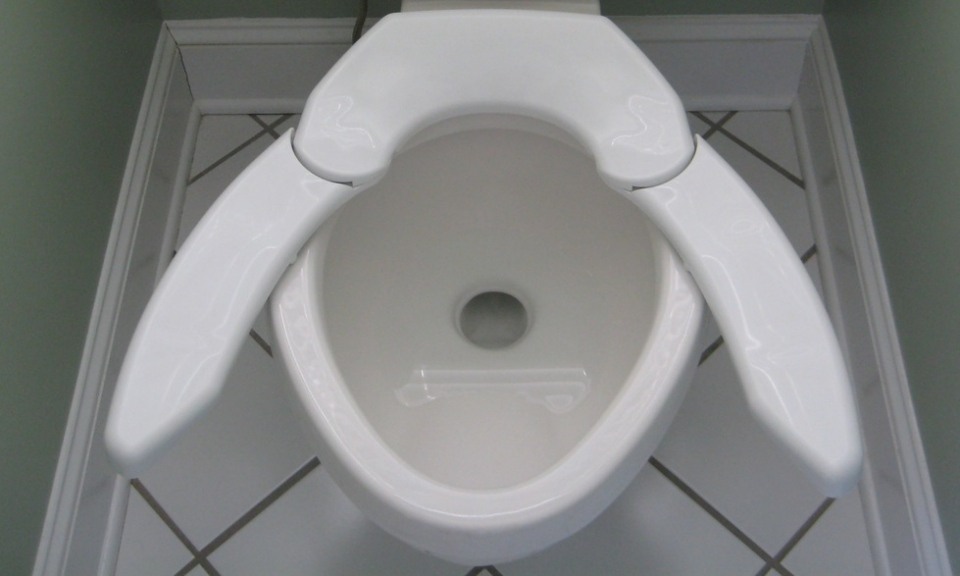 Adjustable Toilet Seat One Size Fits All Butts
