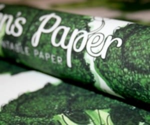 Unwrap It, Then Plant It: 100% Plantable Wrapping Paper