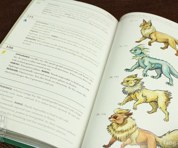 The Pokémon Field Guide to Kanto is Stunning