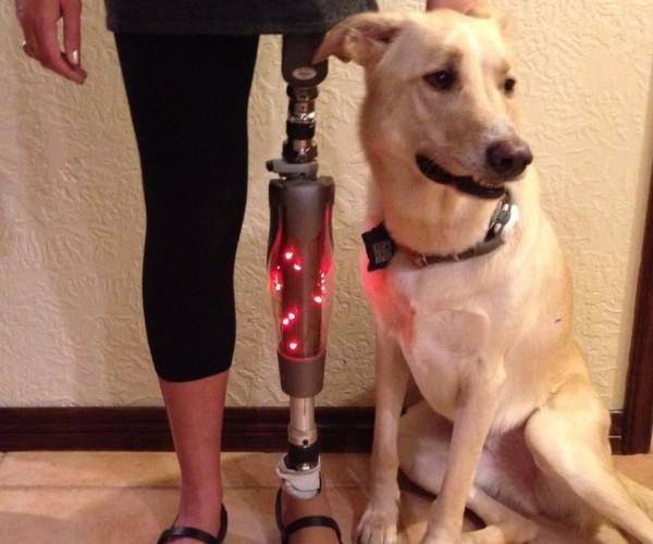 Real Life Leg Lamp: It's a Major Award
