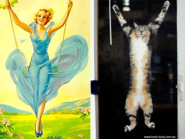pin up cats 3 620x468