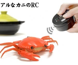 Remote Control Crustaceans Give You a Bad Case of Crabs
