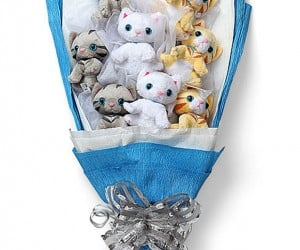 Plush Kitten Bouquet Lets You Say It with Kitties