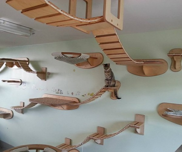 The Ultimate Furniture for Cats