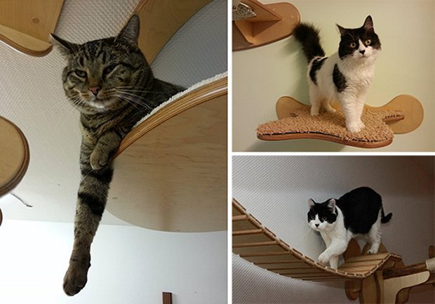 cat furniture1