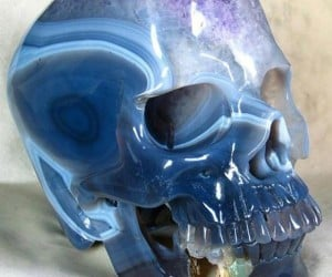 skull 2 300x250