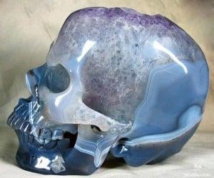 skull 4 300x250
