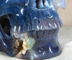 skull 6 300x250
