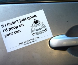 Insult Magnets Send a Message to Inconsiderate Parkers