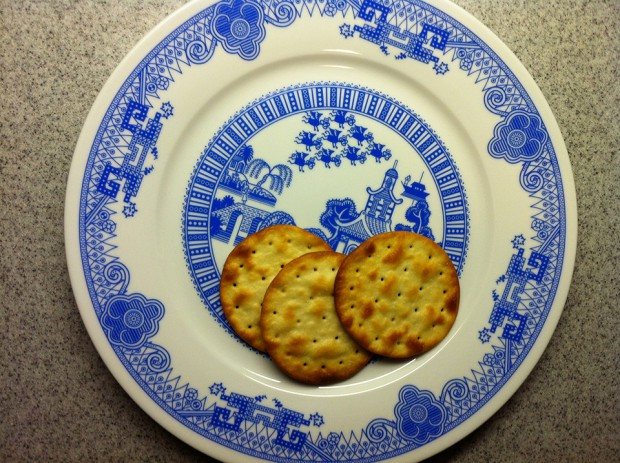 calamityware-willow-pattern-dinner-plates-by-don-moyer-2
