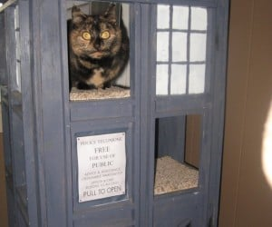 TARDIS Cat Condo for Peter Ca-Paw-di