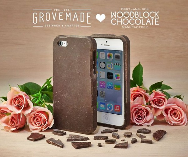 iPhone 5/5S Case Made from Real Chocolate: Chocolate Covered Apple