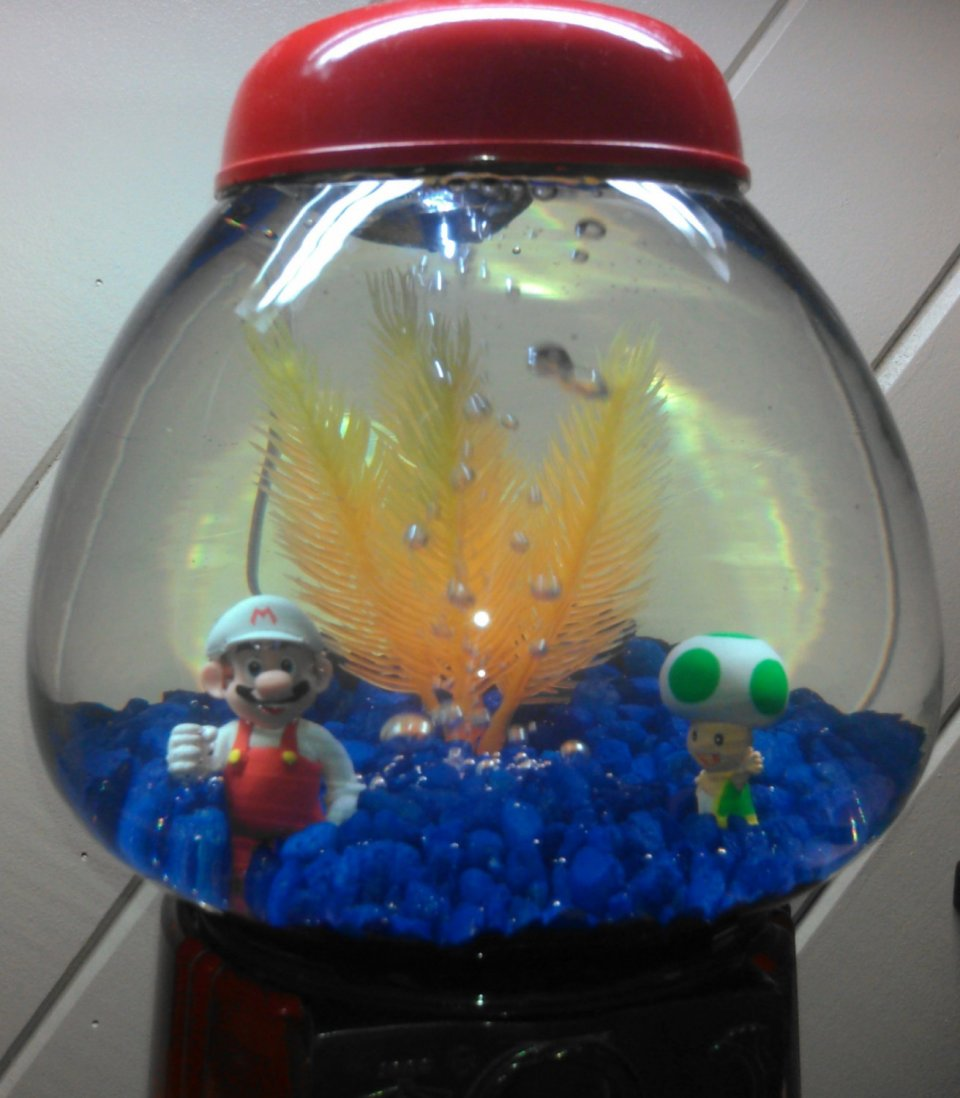 Super mario gumball machine aquarium do mushrooms grow for Gumball fish tank