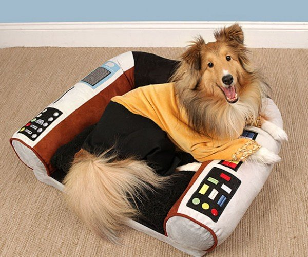 Star Trek Captain's Chair Pet Bed Puts Your Dog in Charge