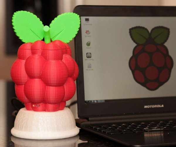 3D Printed Raspberry Pi Raspberry Case: Fruit of the Loom