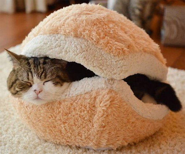I Can Haz This Cat Burger Pillow?