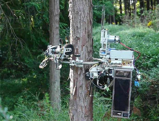 chainsaw_robot
