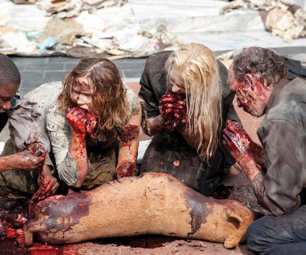 Ever Wonder What the Zombies Actually Eat on the Walking Dead?