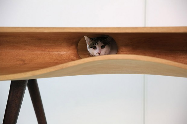 catable cat table 4 620x413