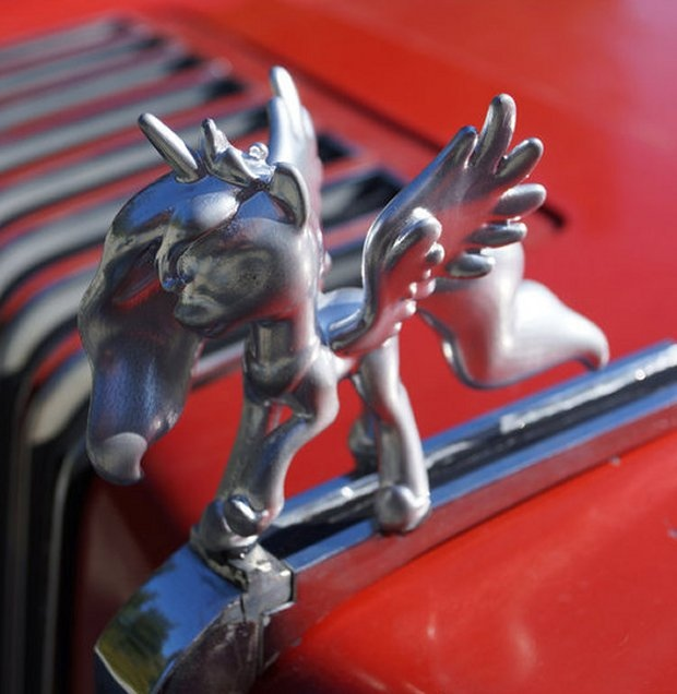 pony hood ornament