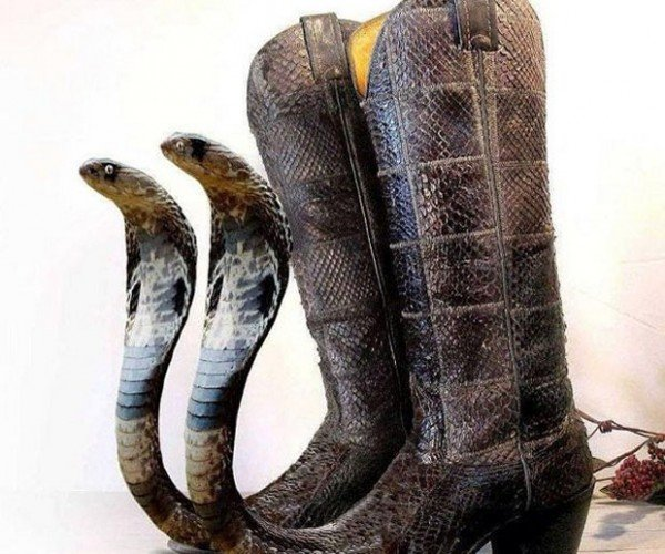 Cobra Head Snakeskin Boots: Snakes. Why Did It Have to Be Snakes?