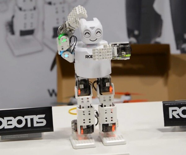 DARwin-Mini Programmable Robot Kit: Survival of the Cutest