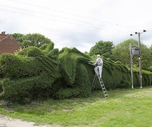 Guy Turns a Huge Hedge into a Dragon, Takes Ten Years