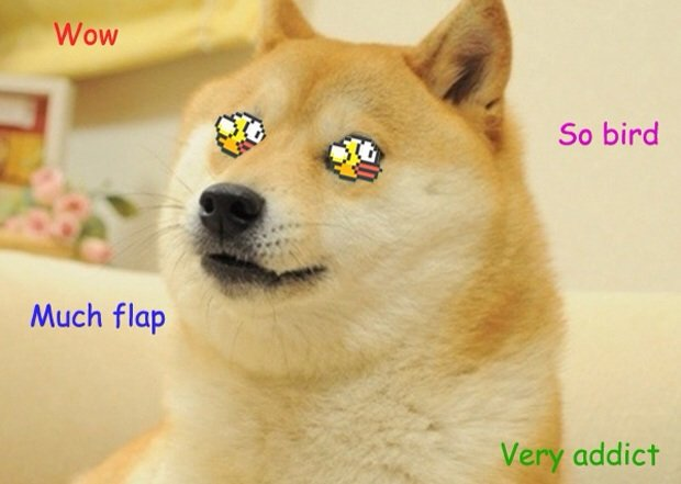 Flappy Bird Doge