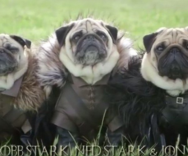 The Pugs of Westeros Is Missing The Hound
