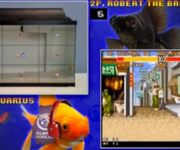 Fish Play Street Fighter: fSport