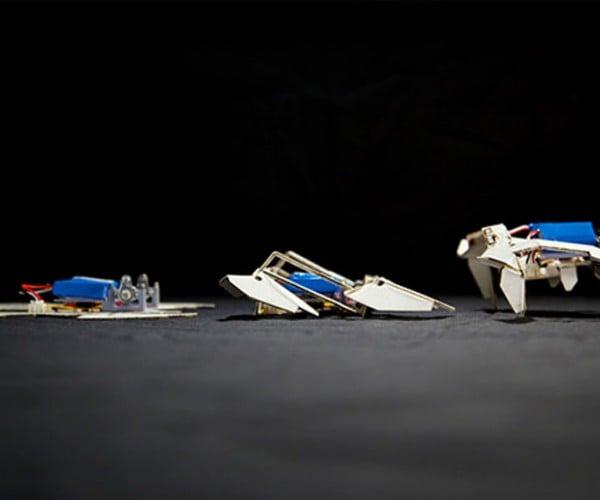Robot Folds Itself into a Usable Form and Walks Away