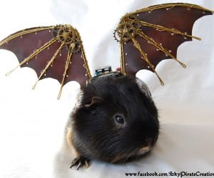 Steampunk Guinea Pig Wings: Because Etsy