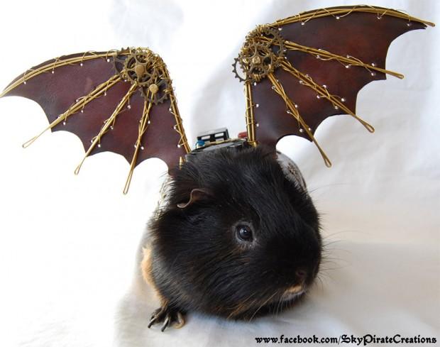 steampunk guinea pig 2 620x489