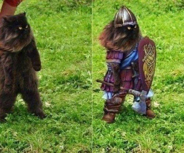 Kitty Photoshop Tweakage Creates Battlecat