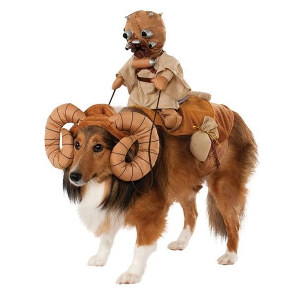 dog-costume-1