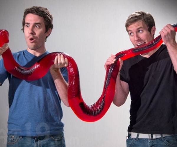 26-Pound Gummy Python: Snakes. Why Did It Have to Be Snakes?