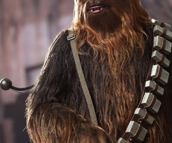 han_chewie_hot_toys_4