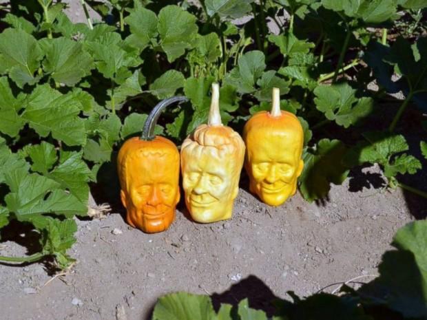 frankenstein pumpkins1