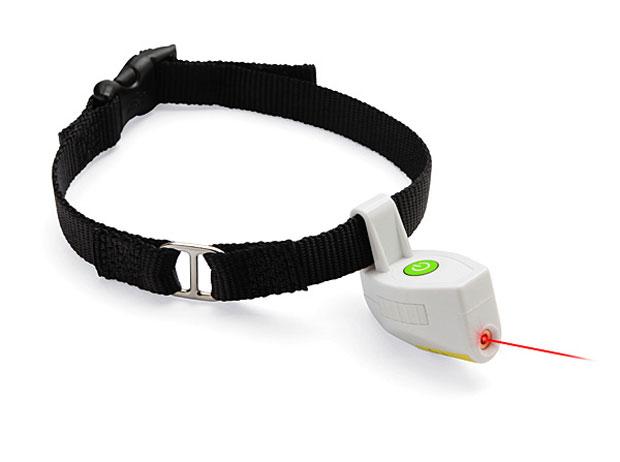 laser-collar-1