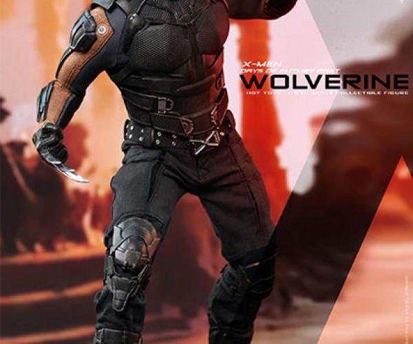 wolverine-5