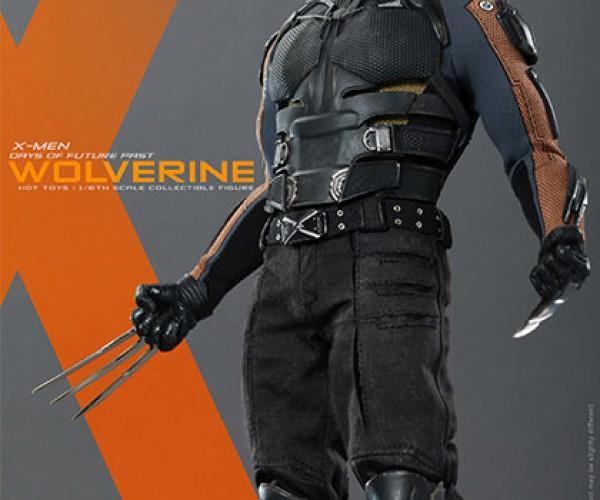 wolverine-8