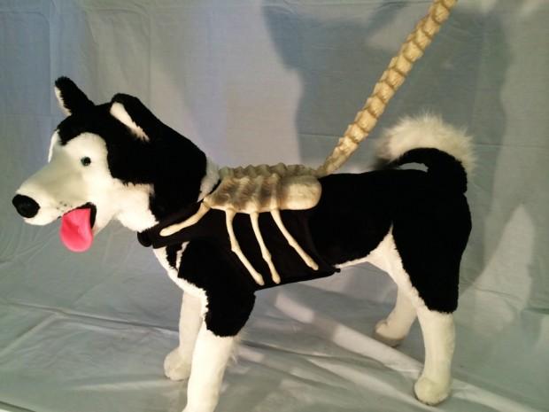 alien dog leash
