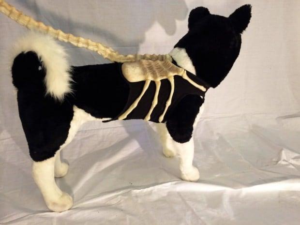 alien dog leash1