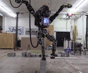 This Robot Does the Crane Kick