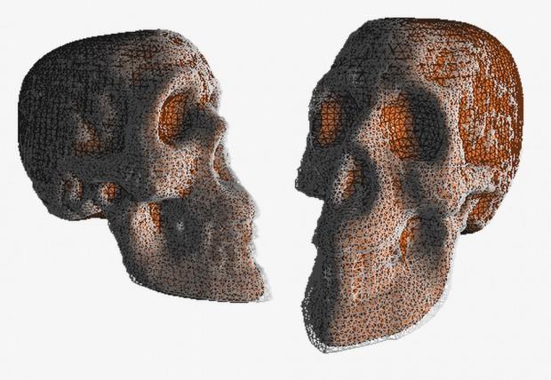 3d_skull_scan_1