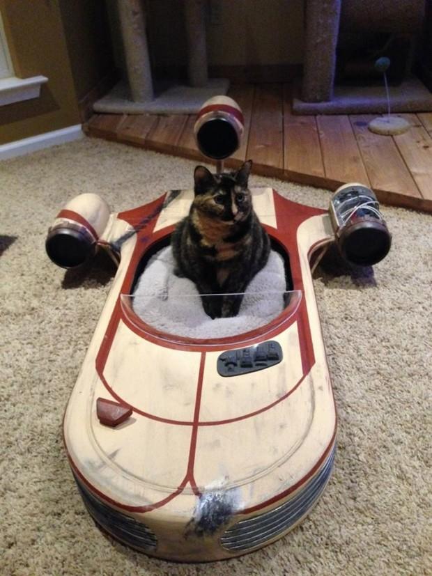 landspeeder cat