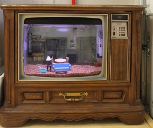 This Aquarium Is in an Old TV, Looks Like Seinfeld's Apartment