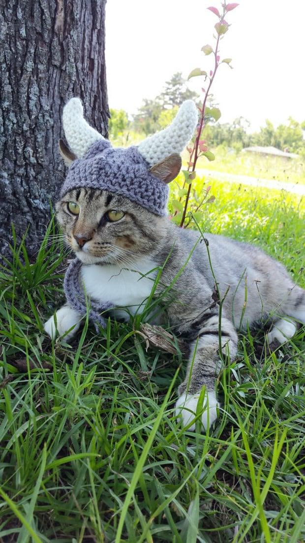 viking_cat_hat