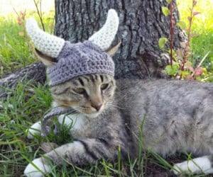 Your Cat Probably Wouldn't Tolerate This Crocheted Fantasy Viking Helm